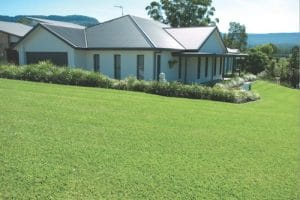 Wholesale turf supplies Australia