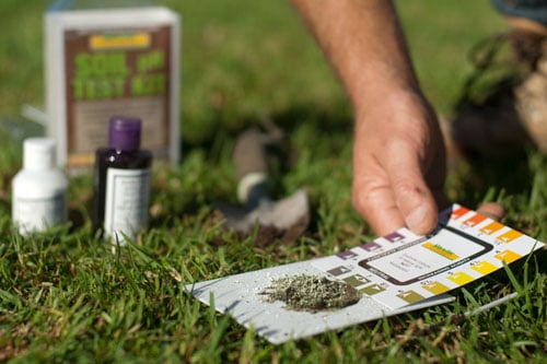 pH Testing – Lime for Healthy Lawns