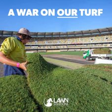 A war on our turf